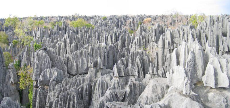 L'écotourisme à Madagascar
